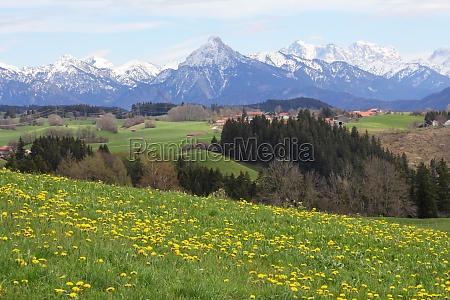 bavaria in the spring