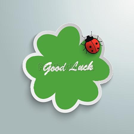 saludos fiesta dama grafico verde escarabajo