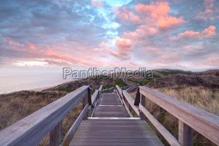 footbridge in the dune landscape