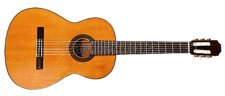 la vista de la guitarra acustica