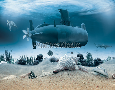 vida submarina con submarino