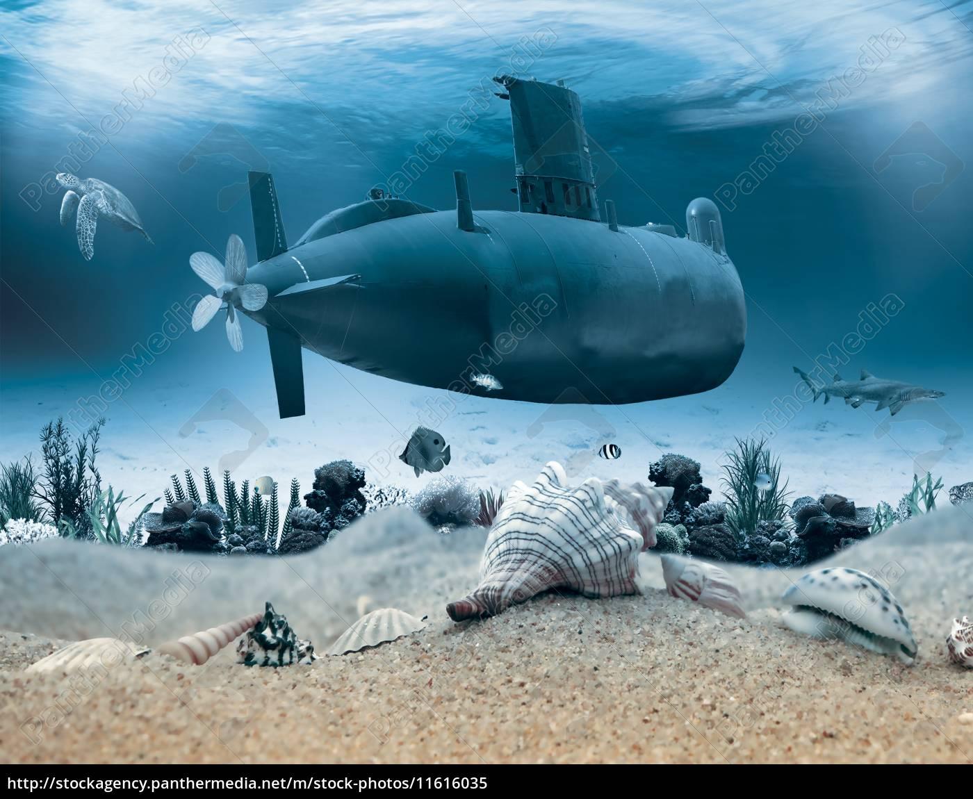 vida, submarina, con, submarino - 11616035