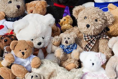 osos de peluche en el mercado