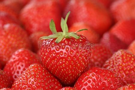 comida verano veraniego frutas fruta fresa