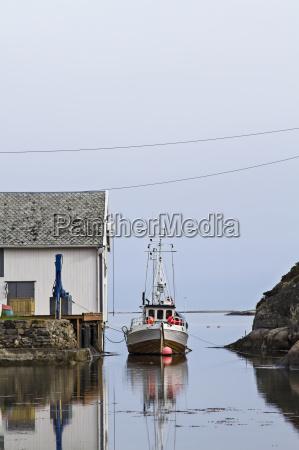 cortador de pescado noruego