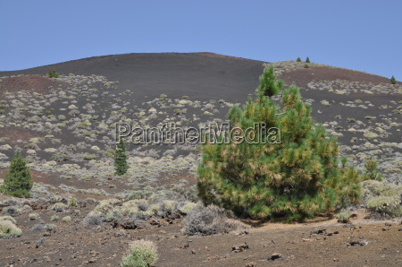 espanya canario volcanes tenerife paisaje naturaleza