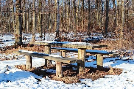mesa de bosque de madera en