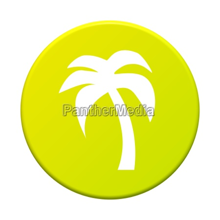 button round palm