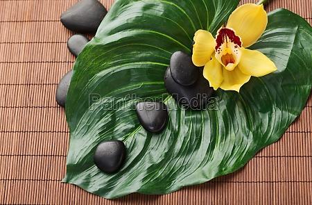 masaje piedras flores estera