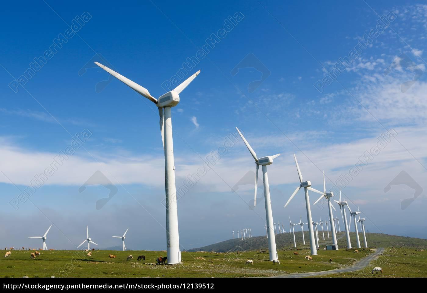 eólico - 12139512