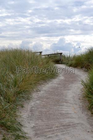 camino a traves de las dunas