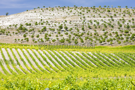 acuerdo paseo viaje planta implantado agricultura