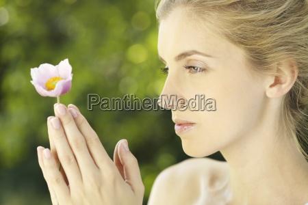 flor planta retrato ver baviera alemania