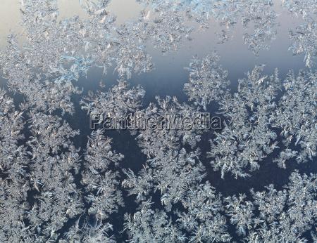 copos de nieve en cristal de