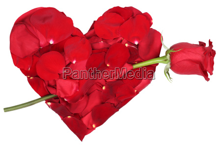 corazon de flores con el amor