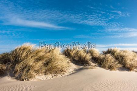 duna en el mar baltico