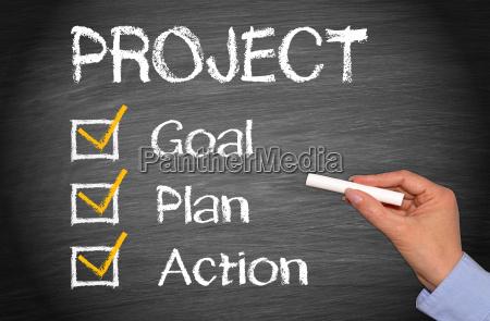 accion objetivo del plan proyecto