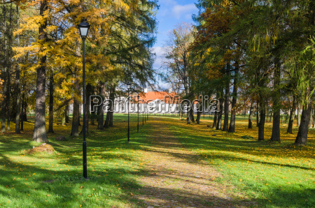 alley in the autumn in the