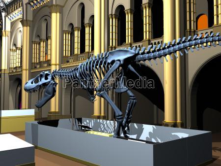 museo britanico de historia natural con