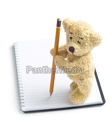 nota objeto solitario liberado animal oso