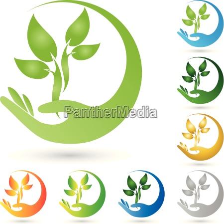 logotipo plantas hojas mano naturopatas
