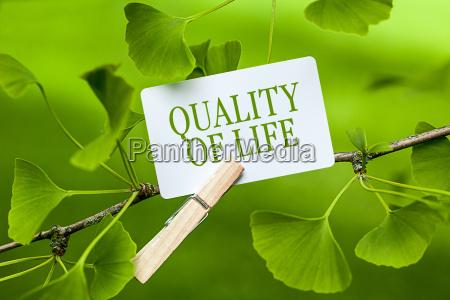 existir vida medio ambiente paz armonia