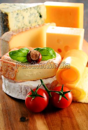diferentes tipos de quesos aislados en
