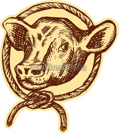 liberado graficos animal toro cosecha ilustracion