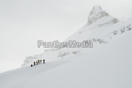 un grupo de esquiadores de fondo