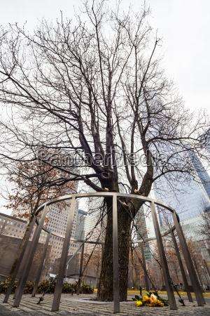 torre ciudad monumento memorial disenyo arbol