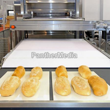 linea de panaderia