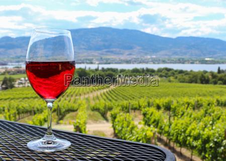 copa de vino frente a un