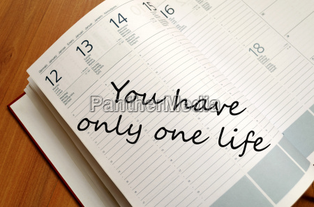 you have only one life text