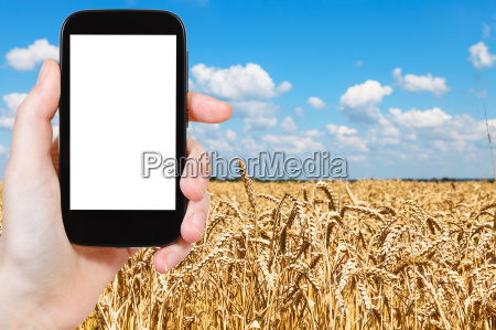 telefono azul mano movil liberado disenyo