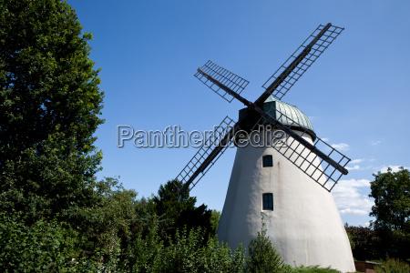 molino de viento de tander