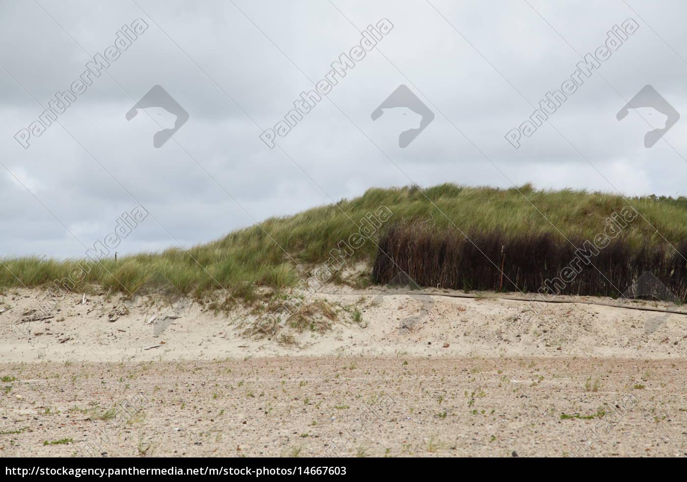 medio ambiente, fiesta, vacaciones, playa, la playa, orilla del mar - 14667603