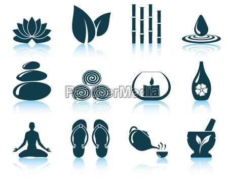 conjunto de iconos de spa