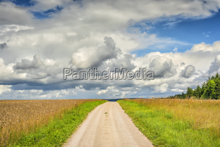 verano veraniego pais dulce paisaje naturaleza