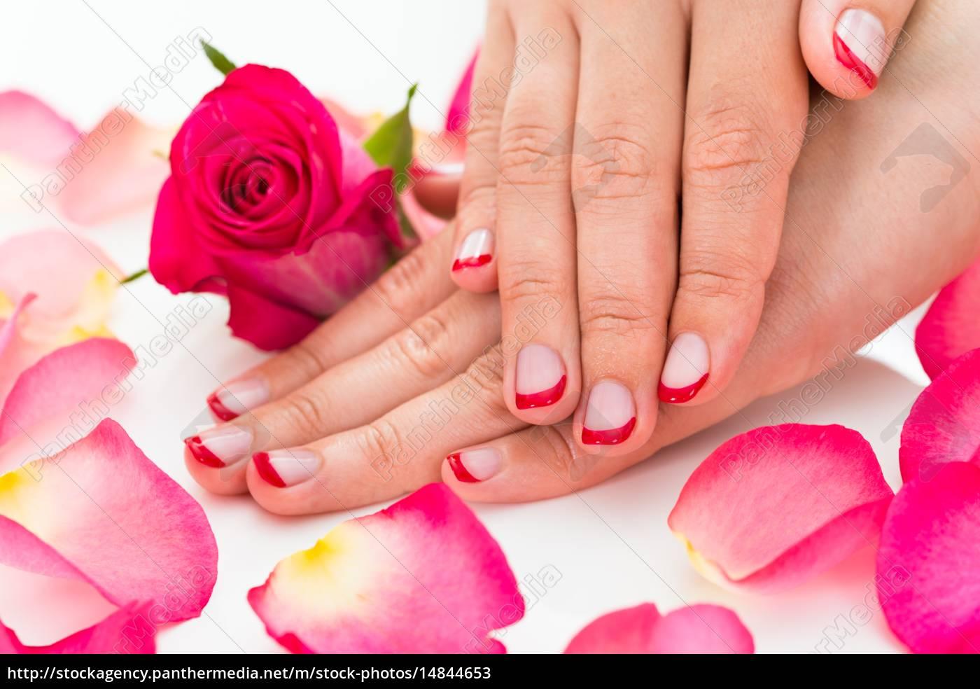 Royalty Free Imágen 14844653 Manos Femeninas Con Barniz De Uñas Manicura