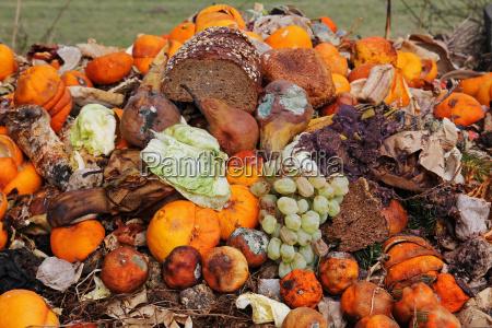 la fruta y el pan desechados