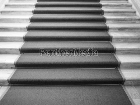 alfombra roja en blanco y negro