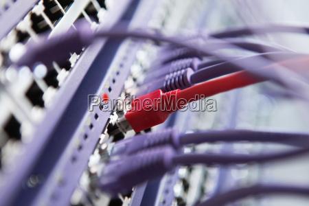 conecta el rojo