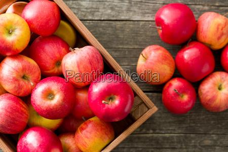 manzanas rojas de otonyo