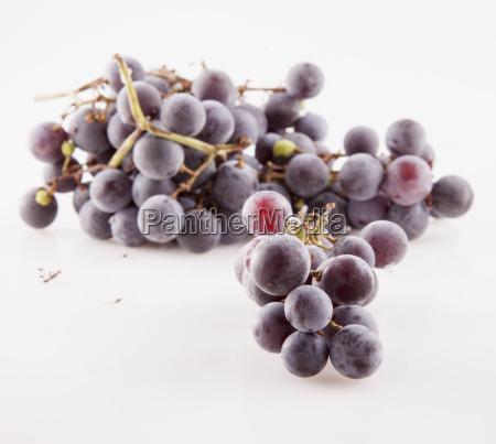 black grape over white