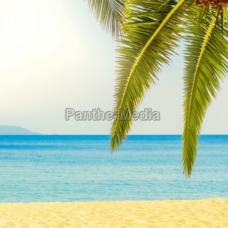 tropical beach destinazione di viaggio estivo