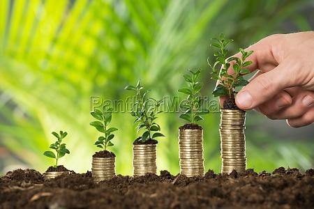 moneda ahorrar ahorra monedas financiero crecer
