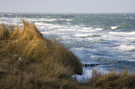 mar baltico en otonyo con sol