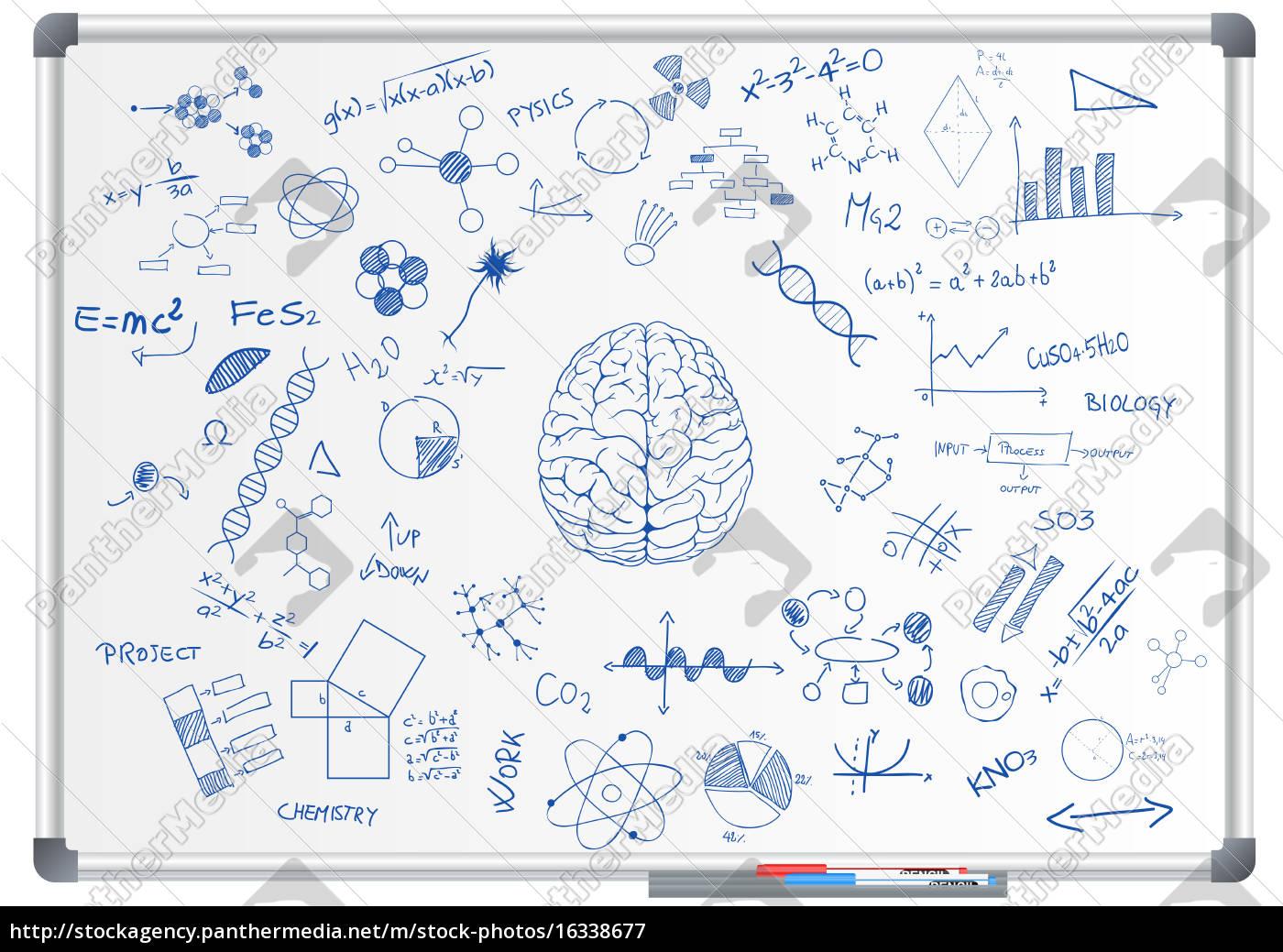 pizarra, de, ciencia, del, cerebro - 16338677