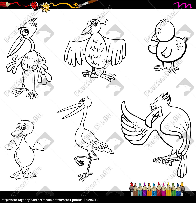 Vector Libre De Derechos 16598612 Dibujos Animados Aves Página Para Colorear