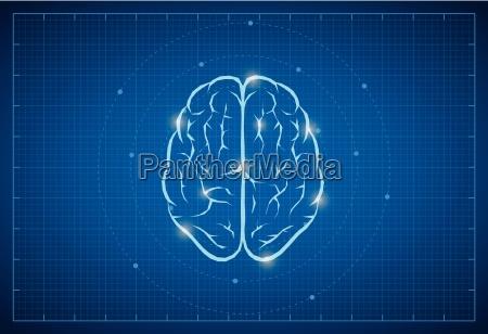 simbolo de cerebro vectorial en bluprint